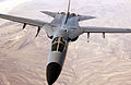 Australian F-111C 2006.jpeg