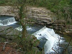 Aysgarth Falls (Lower).jpg