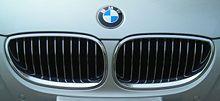 بحث حول السيارة bmw 220px-BMW-Niere.JPG