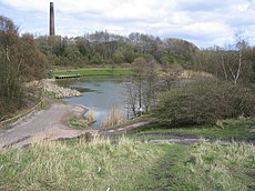 Bag Pool , Baggeridge Country Park, Sedgley - geograph.org.uk - 154307.jpg