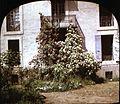 Balcon aux rosiers, chalet de E. Trutat, Foix (2867728294).jpg