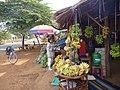 Bananas in Ban Houayhek - panoramio.jpg