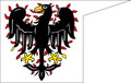 Banner of the Přemyslid dynasty.png