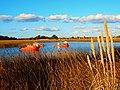 Barcas de pesca en Bañados de Santa Lucia (Montevideo, Uruguay)...,.JPG