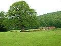 Barn, Glazier's Forge - geograph.org.uk - 505830.jpg