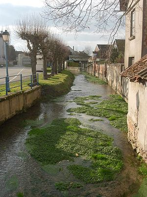 Vendeuvre-sur-Barse - Image: Barse