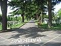 Basingstoke Cemetery - geograph.org.uk - 1281705.jpg