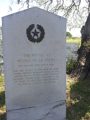 Battle of Resaca de la Palma - Image: Battle of Resaca de La Palma Texas historical marker