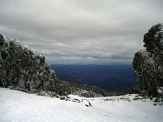 Baw Baw National Park Protected area in Victoria, Australia