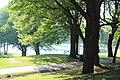 Beaver Lake IMG 3926.JPG