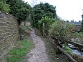 Beginning of footpath from Fort Road up onto Pewley Down - geograph.org.uk - 1081165.jpg