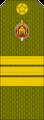 Belarus MIA—15 Sergeant rank insignia (Olive)—SR.png