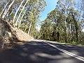 Benandarah NSW 2536, Australia - panoramio (13).jpg