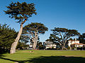 Berwick Park, Pacific Grove, California.jpg
