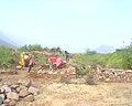 Bhangarh fort Alwar Rajasthan 41.jpg
