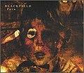 Blackfield - Pain (single cover).jpg