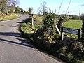 Blackfort Road, Lissan - geograph.org.uk - 1706667.jpg