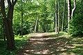Bois de Boulogne, Paris 16e 2.jpg