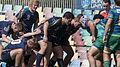 Bond Rugby (13351442423).jpg