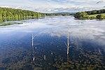 Bontecou Lake aerial tamarack stumps.jpg