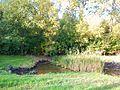 Botanical Garden Poznan xxxx (8).jpg