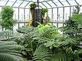 Botanická zahrada Liberec (20).jpg