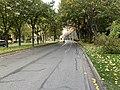 Boulevard Albert 1er - Nogent-sur-Marne (FR94) - 2020-10-14 - 1.jpg