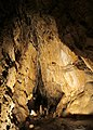 Bozkovske dolomitove jeskyne (10).jpg