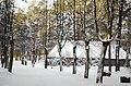 Brīvdabas muzejs ziemā, Rīga - panoramio (3).jpg