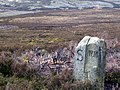 Bradfield Moor with Boundary Stone - geograph.org.uk - 414614.jpg