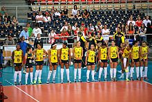 Brasilianische Nationalmannschaft