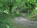 Bridleway near Brynhinlle Rhydlewis - geograph.org.uk - 37356.jpg