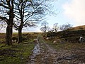 Bridleway near Ditches Farm above Walsden - geograph.org.uk - 104015.jpg