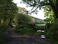 Bridleway near River Lew - geograph.org.uk - 430462.jpg