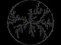Brownian tree circle large.png