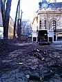 Bucuresti, Romania. Casa Oamenilor de Stiinta. Curatenie dupa Dezastrul (BUCURESTIUL DUPA ASEDIUL FRIGULUI Ianuarie 2019).jpg