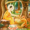 Buddha with monkey.jpg