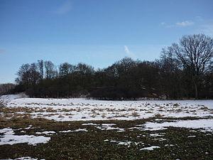 Burgwall im Winter