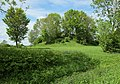 Burgweiler-1527.jpg