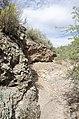 Butcher Jones Trail to Pinter's Point Loop, Tonto National Park, Saguaro Lake, Ft. McDowell, AZ - panoramio (138).jpg