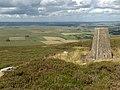 Byer's Pike - geograph.org.uk - 213101.jpg