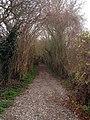 Byway off Wicken Lane - geograph.org.uk - 1602563.jpg