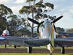 CAC CA-13 Boomerang RAAF (27157018336).jpg