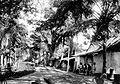 COLLECTIE TROPENMUSEUM Straatgezicht in Kalipoetjang TMnr 10027525.jpg