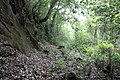 Cales area archeologica 102.jpg