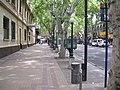 Calle centro mendoza - panoramio.jpg