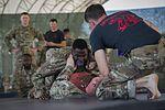 Camp Lemonnier Combatives Tournament 170113-F-QF982-0700.jpg