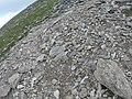 Capel Curig, UK - panoramio (58).jpg