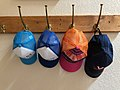 Caps (43551988054).jpg