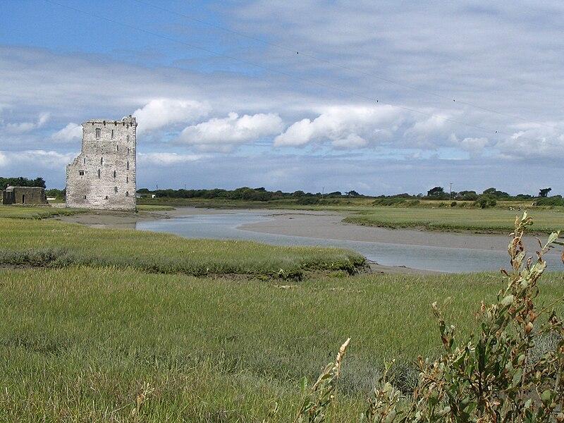 Carrygafoyle Castle